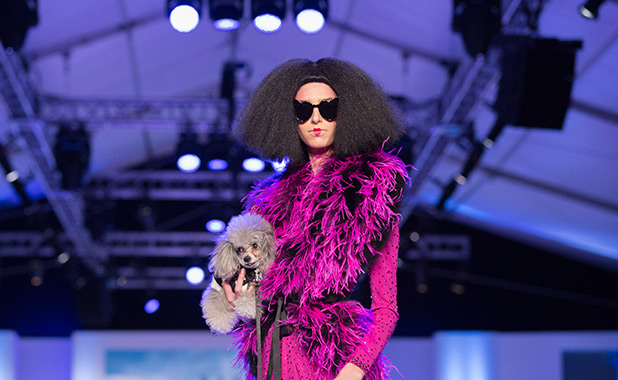 Fashion Week El Paseo Le Chien